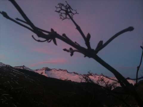 Oberalpstock, Pez Ault, Alp Run
